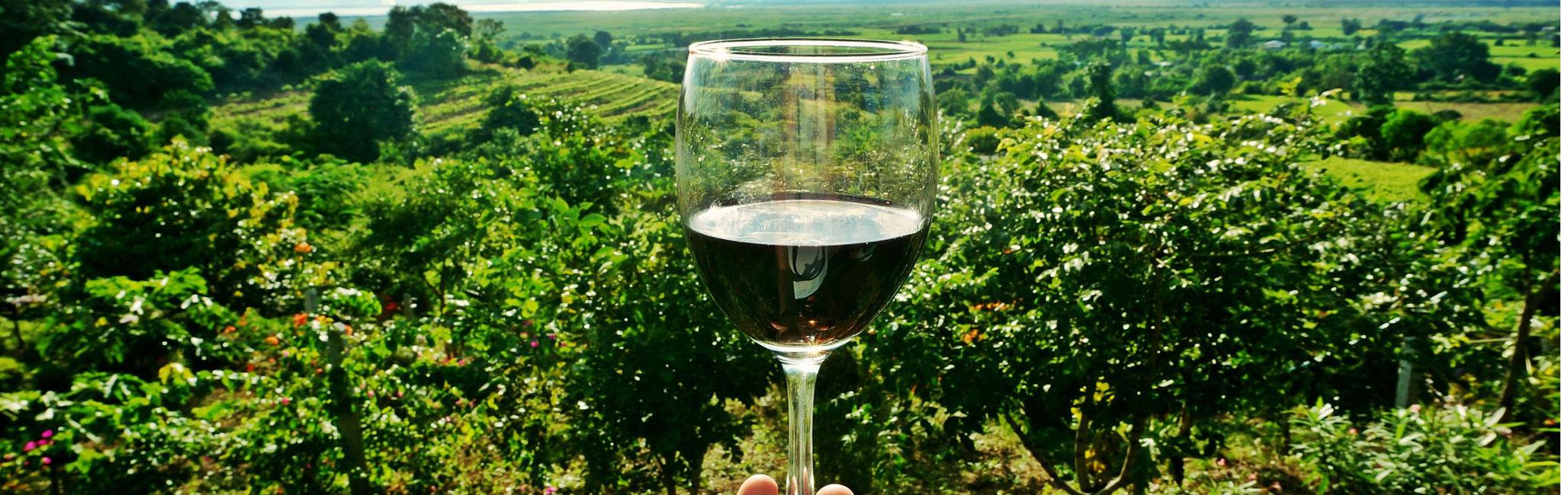 Sedona-Wine-Tasting-Tour